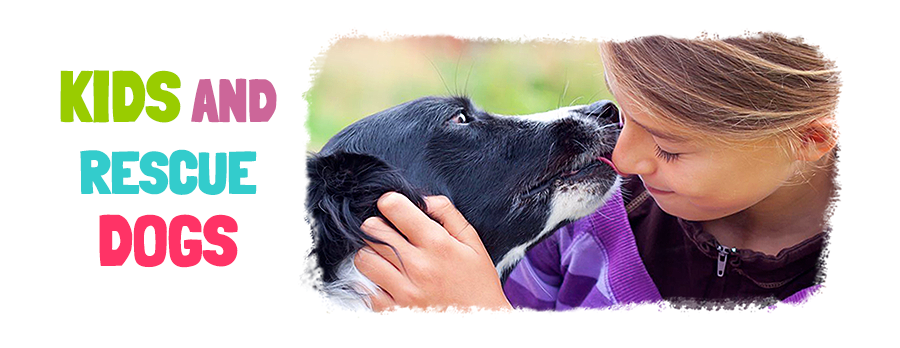 Dog Training Classes for Kids, Peoria, Arizona